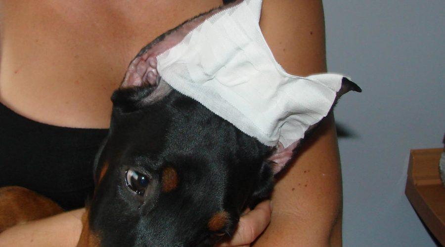 Метод легкого ушного вкладыша - лента корона