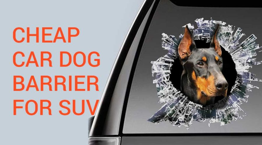 Cheap car dog barrier for SUV – DIY guide