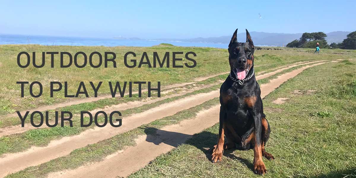 juegos al aire libre para jugar con tu perro doberman europeo